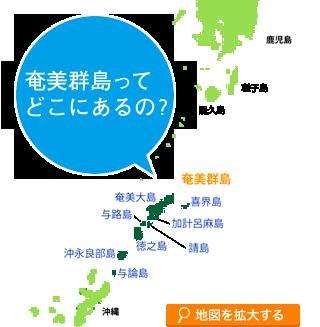 奄美 移住   ねりやかなや 南の島の楽園奄美への移住支援サイト